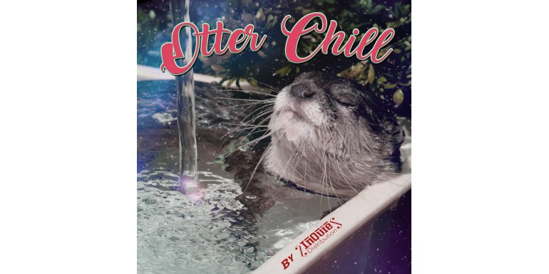 Détendez-vous, la playlist Otter Chill est là