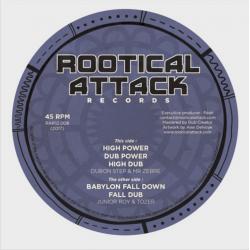 Tozer / Mr Zebre - Babylon Fall down