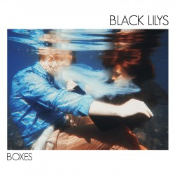 Black Lilys - Boxes