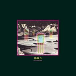 Lingus - Acceleration (VN)