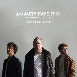 AMAURY FAYE TRIO - LIVE IN BRUSSELS