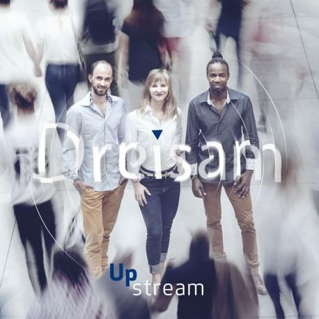 DREISAM - UPSTREAM