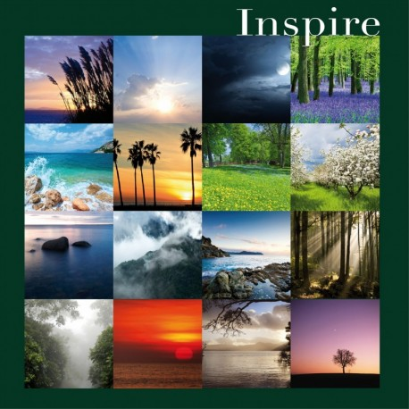 INSPIRE - PHILIPPE BESTION ET VINCENT BRULEY
