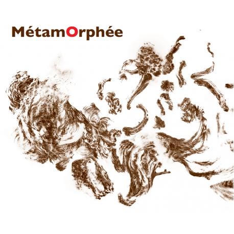 MÉTAMORPHÉE - ARBRES ONT BOUGE PENDANT LA NUIT
