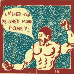 LAISSEZ-MOI PEIGNER MON PONEY - LILY LUCA