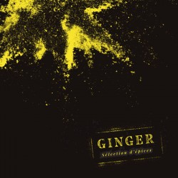 SELECTED SPICES - GINGER