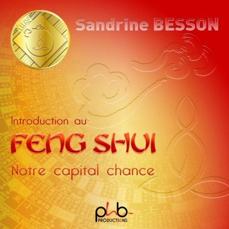 INTRODUCTION AU FENG SHUI NOTRE CAPITAL CHANCE - SANDRINE BESSON